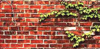 «انتهای دیوار کازینو» اثر سپیده ابرآویز