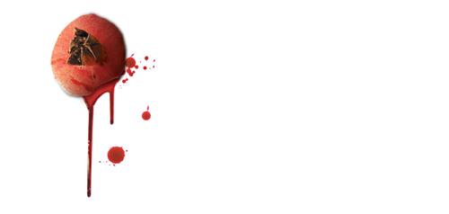 «خون انار گردن پاییز است» اثر مژده لواسانی
