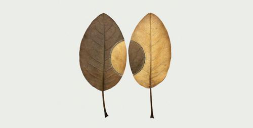 «کتاب دوستی» اثر محمود کیانوش
