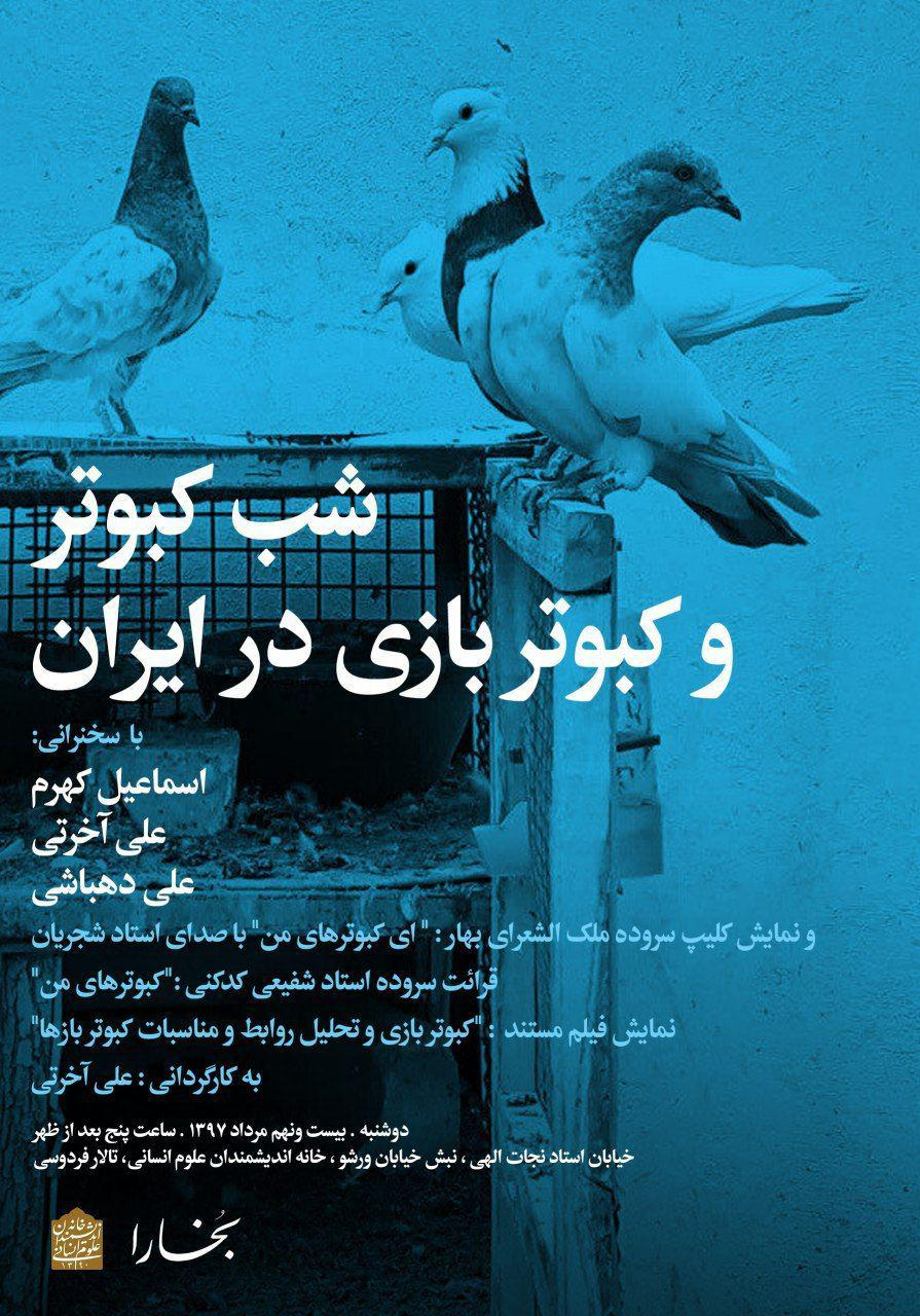 شب کبوتر و کبوتر بازی در ایران
