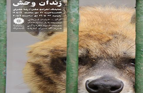 نمایشگاه عکس «زندان وحش»